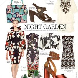 Style Tips-Darveys